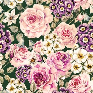 A. Roses 02