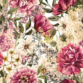 A. Roses 15