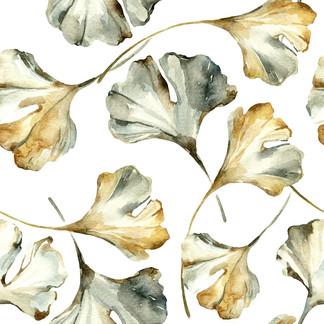 A . Botanical 31