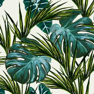 A. Tropicales 10