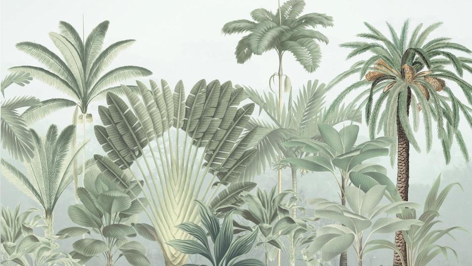 M. Royal palms 02