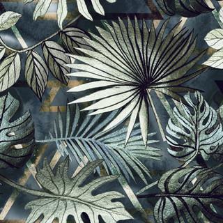 A. Palms16