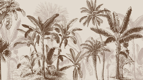 M. Royal Palms 04