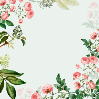A. Spring 09