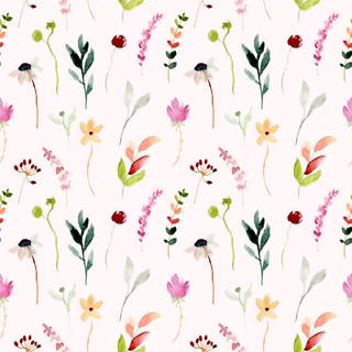 A. Florales. 57