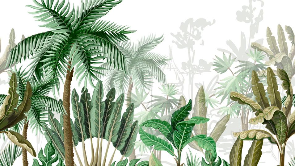 M. Royal Palms  10