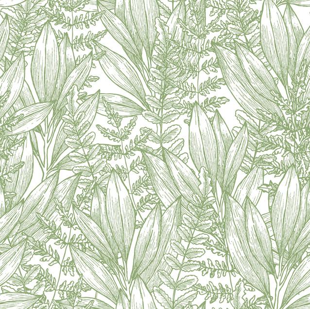 A . Botanical 37