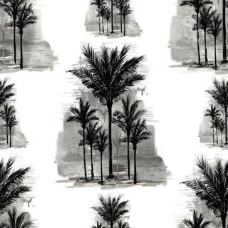 A.  Palms 05