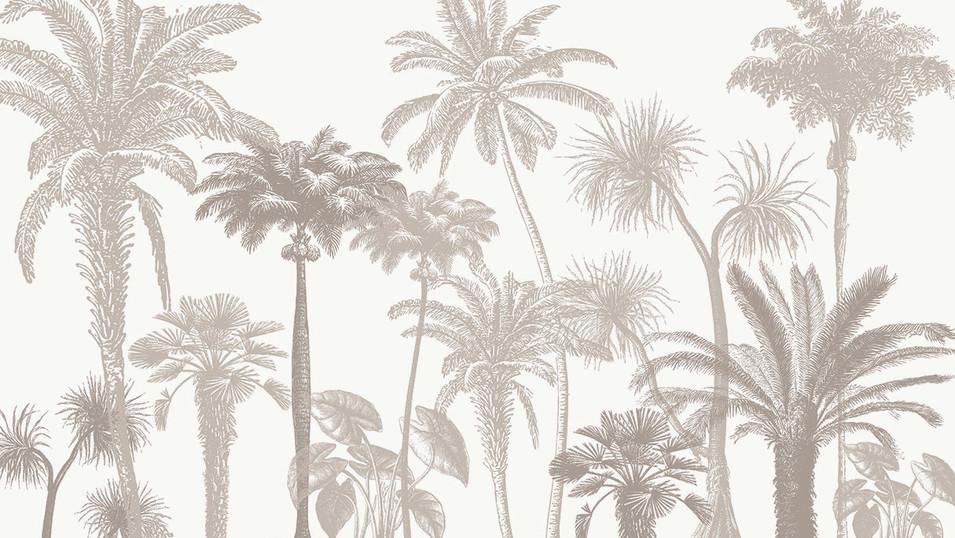 M. Royal Palms 16