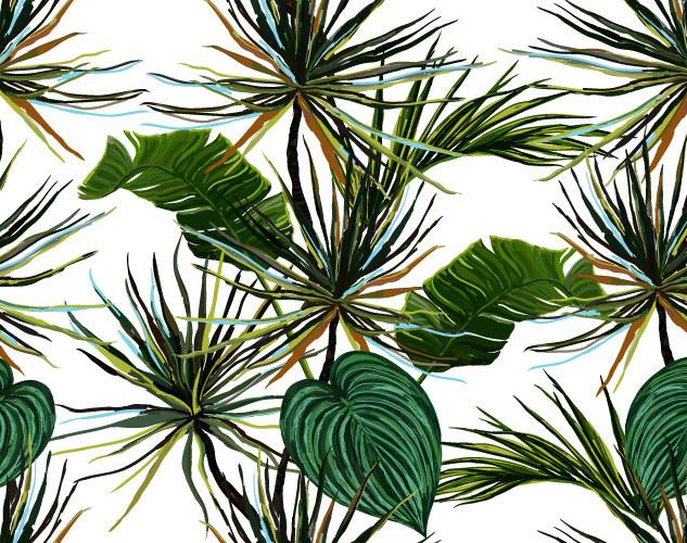 A. Tropicales 12