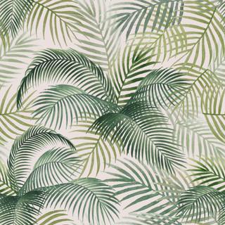A.  Palms 28