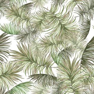 A. Palms 02