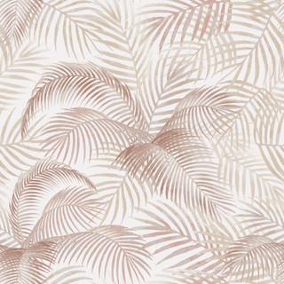 A. Palms 29
