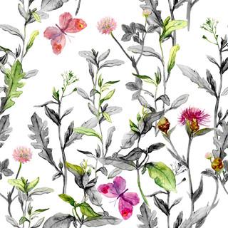 A. Florales. 51