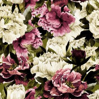 A. Roses 08