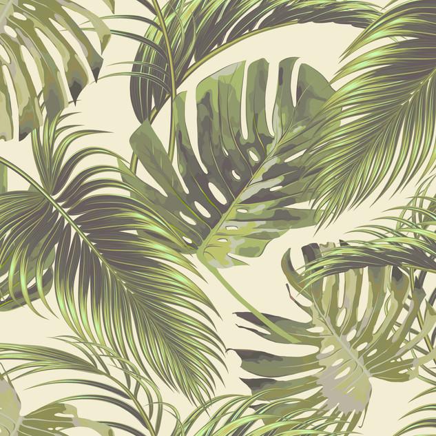 A. Tropicales 34