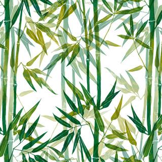 A.  Palms 19