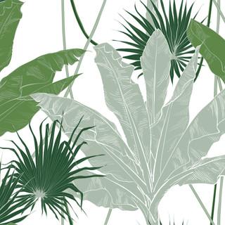 A. Palms 21