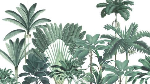 M. Royal palms 08