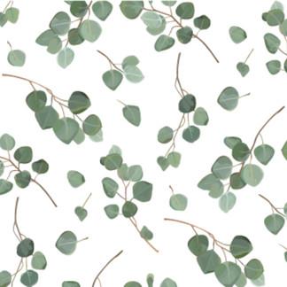 A . Botanical 09