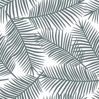 A. Palms14