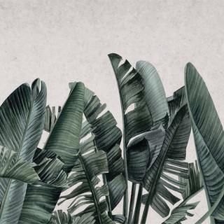 A. Botánico 03