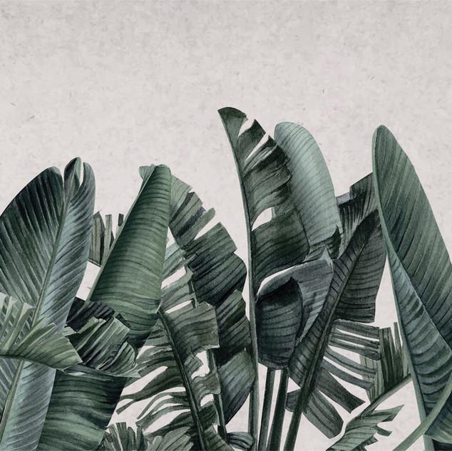 A. Botánico 05