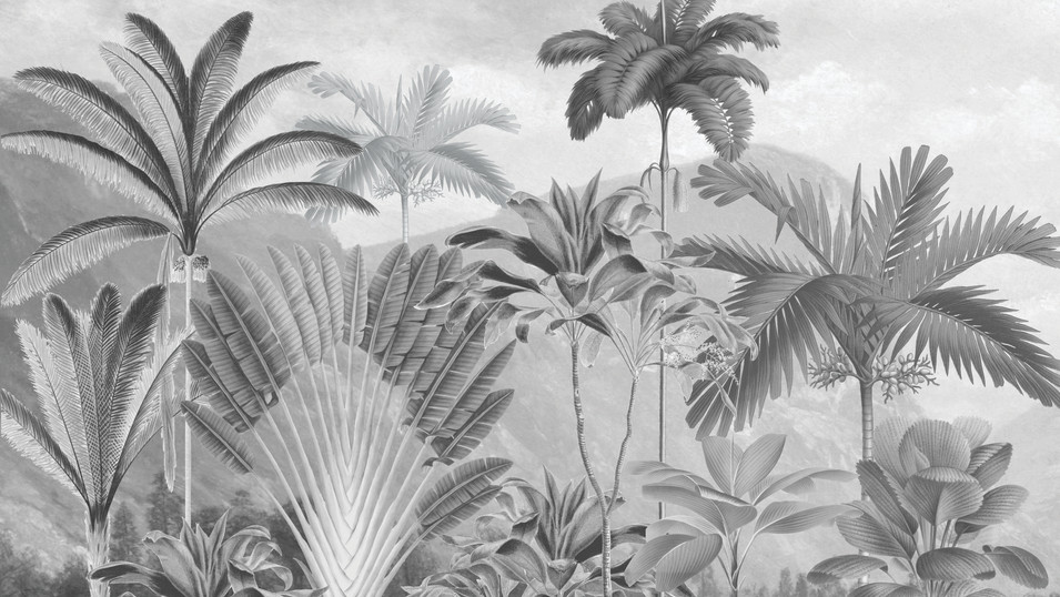 M. Royal Palms 06