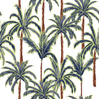 A.  Palms 06