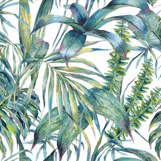 A. Tropicales 05
