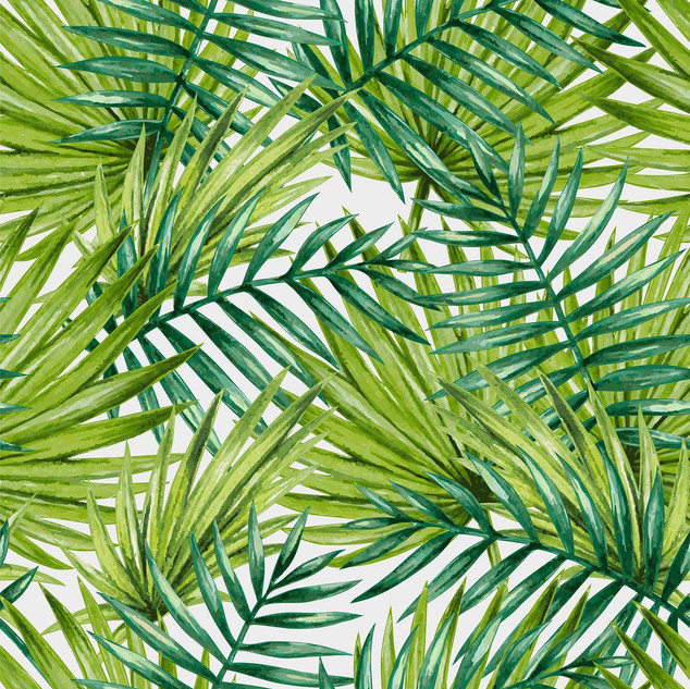 A. Tropicales 02