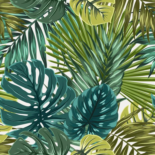 A. Tropicales 16