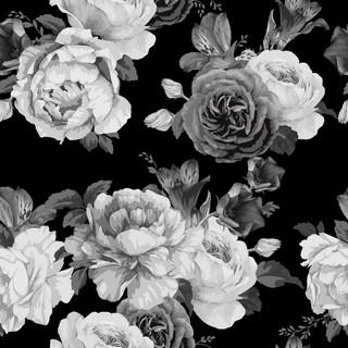 A. Roses 24