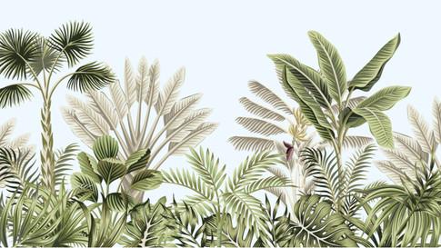 M. Royal Palms 13