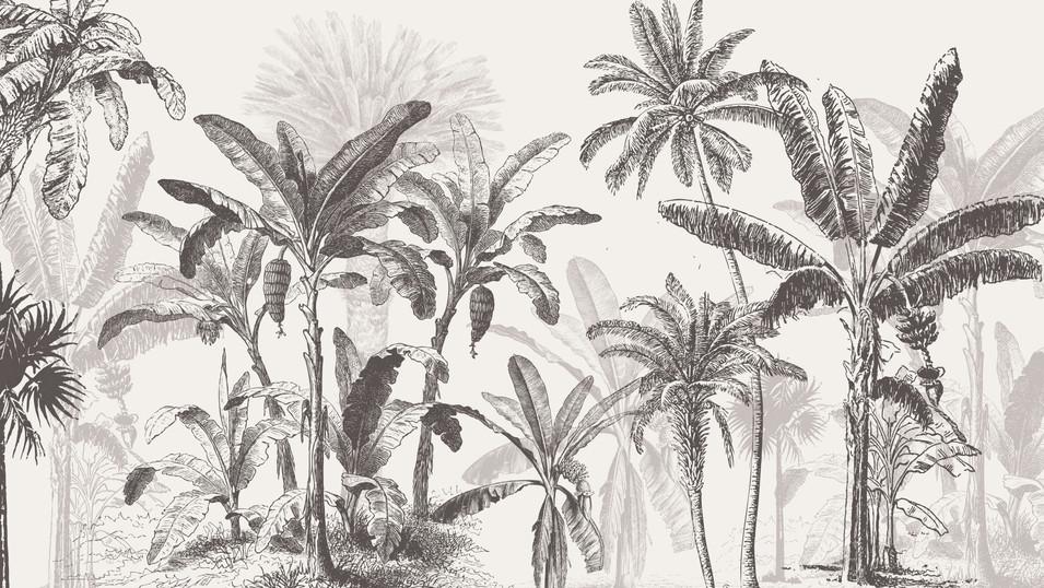 M. Royal Palms 03