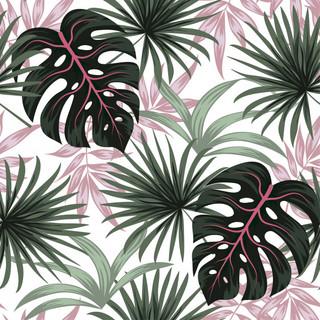 A. Tropicales 52