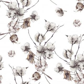 A. Florales. 54