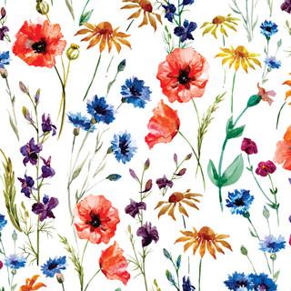 A. Florales. 17