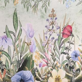 A. Botánico 11