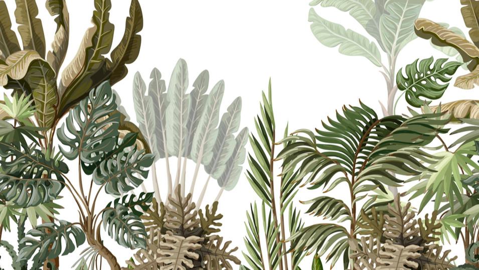 M. Royal Palms 11