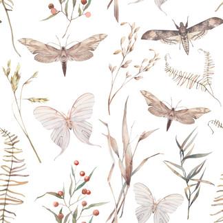 A . Botanical 01