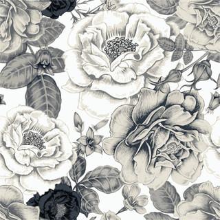 A. Roses 01