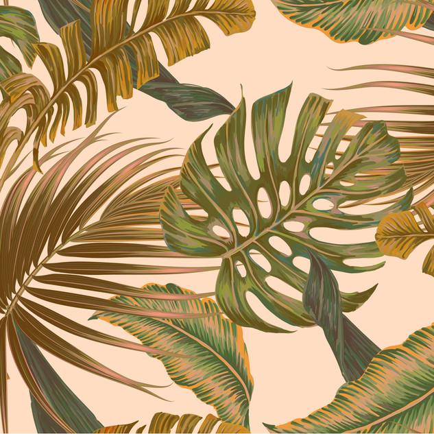 A. Tropicales 36