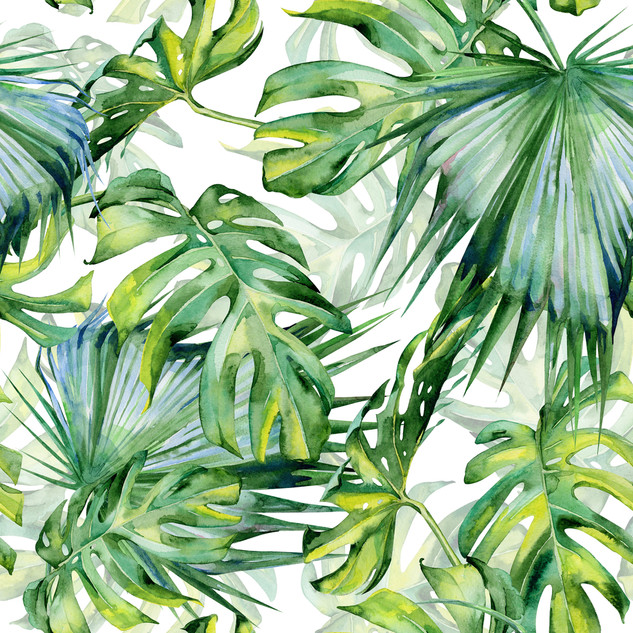 A. Tropicales 04