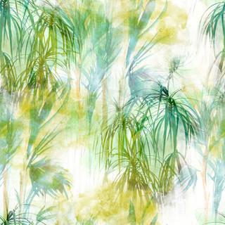 A. Palms 22