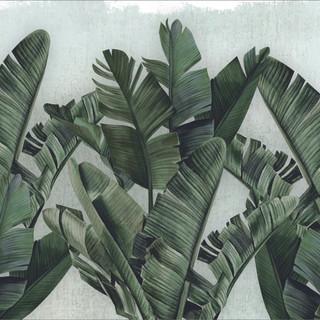 A. Botánico 04