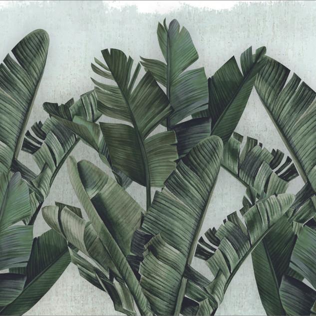 A. Botánico 06