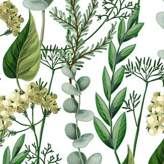 A . Botanical 06