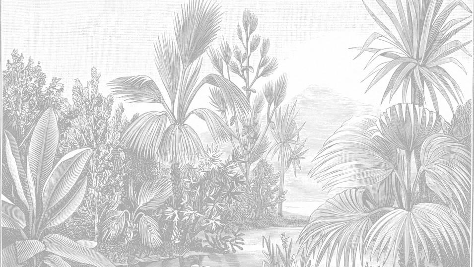 M. Royal Palms  19