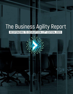 2020 Business Agility Institute